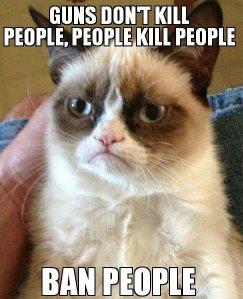 funny-Grumpy-cat-ban-people1